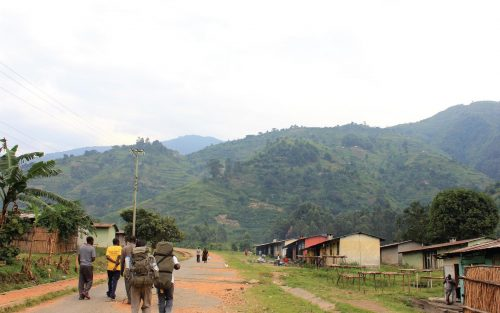 9 Days Trekking Rwenzori Mountains Uganda