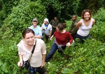 Gorilla Trekking Tour Uganda