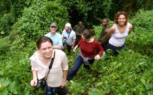Coffee, Gorillas & Wildlife Safari